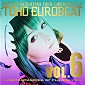 TOHO EUROBEAT VOL.6 PHANTASMAGORIA OF FLOWER VIEW 【同人音楽】