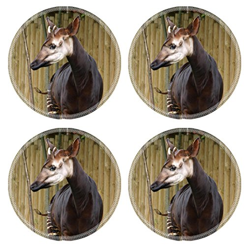 MSD Round Coasters Chester Zoo Natural Rubber Material Image 18842296464