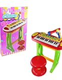 ZQ instrumento musical de múltiples funciones del teclado del órgano electrónico con micrófono