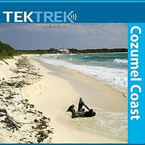 Cozumel Coast Speech