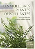 Image of Les meilleures plantes dépolluantes