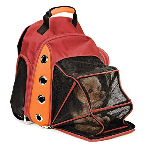 EXPAWLORER Mesh Multiple Deluxe Dog Carrier Travel Backpack Double Shoulders Straps Bag for Small Pet Puppy Cat Wine Red