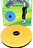 HealthPanion Acupressure Pyramid Twister for Figure Tone-up, Spine Fitness, Abs Trimming