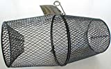 Danielson Cray Fish Trap