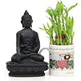 Buddha N Lucky Bamboo On Mother Day - Resin Buddha Idol 1, 2 Layer Lucky Bamboo 1, Love You Ceramic Coffee Mug 1,Mother Day Wishes, Mothers Day Gifts, Send Mothers Day Combo, Mothers Day Combo Online, Home Décor Gifts