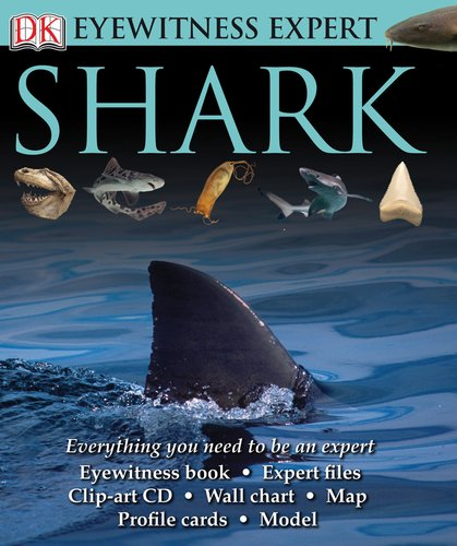 Eyewitness Expert: Shark