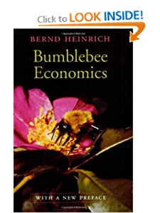 Bumblebee Economics: Revised edition Bernd Heinrich