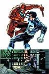 Daredevil Vs. Punisher: Means & Ends TPB