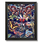 Butterfly Butterflies Collage Kids Room Home Decor Wall Picture Black Framed Art Print