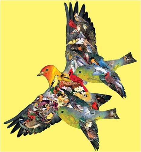 Picture of SunsOut Dennis Rogers Tanager Shaped Jigsaw Puzzle 1000pc (B000PCME3O) (Jigsaw Puzzles)