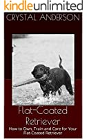 Flat-Coated Retriever: How to Own, Train and Care for Your Flat-Coated Retriever (English Edition)