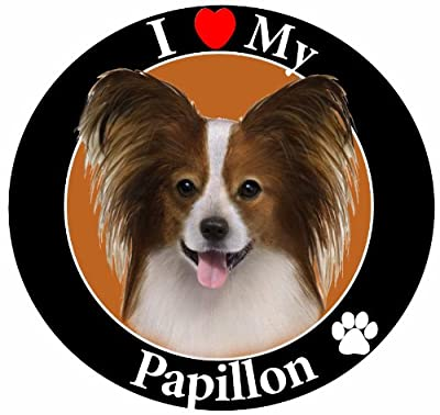 """I Love My Papillion"" Car Magnet With Realistic Looking Papillion Photograph In The Center Covered In High Quality UV Gloss For Weather and Fading Protection Circle Shaped Magnet Measures 5.25 Inches Diameter"