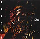 ARROWS(DVD付)(在庫あり。)