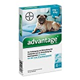 ADVANTAGE 100 Lösung f.Hunde 4-10 kg 4 St Lösung