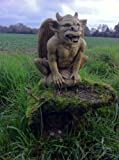 Outdoor Resin Garden Demon Ornament Gargoyle Statue