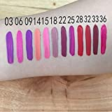 Internet Waterproof Matte liquid lipstick Long Lasting lip gloss Qibest Lipstick (#15)
