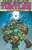 img - for Teenage Mutant Ninja Turtles Volume 11: Attack On Technodrome book / textbook / text book