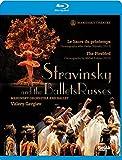 ストラヴィンスキー : バレエ 「火の鳥」 「春の祭典」 (Stravinsky and the Ballets Russes ~ Le Sacre du printemps | The Firebird / Mariinsky Orchestra and Ballet | Valery Gergiev) (Blu-ray)  [輸入盤] [日本語解説書付]