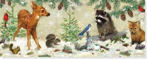 Panoramic Boxed Christmas Cards:Winter Forest Friends