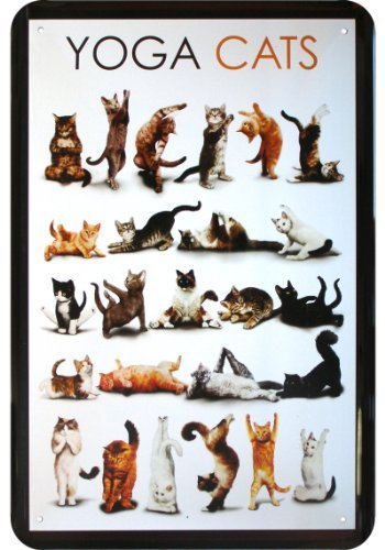 yoga-plaque-humoristique-motif-cats
