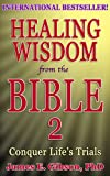 img - for Healing Wisdom from the Bible Vol 2: Conquer Life's Trials book / textbook / text book