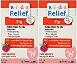 Homeopathic Medicine Kids Relief Flu, 25 ML (2pack)