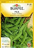 Burpee 62078 Pea, Snap Sugar Daddy Seed Packet