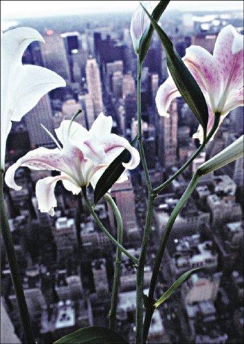 Verschicken Sie elegante Blumengrüße aus New York • auch zum direkt Versenden mit ihrem persönlichen Text als Einleger.
