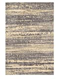 Loloi Rugs DISCDC-02GYGO5076 Discover Collection Contemporary Area Rug, 5-Feet by 7-Feet 6-Inch, Grey/Gold