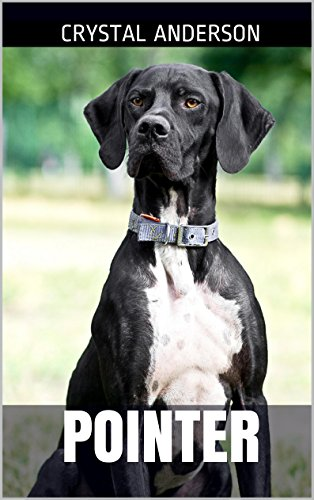 Free Kindle Book : Pointer: How to Own, Train and Care for Your Pointer Dog