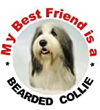 2 Bearded Collie Car Stickers My Best Friend design No. 2