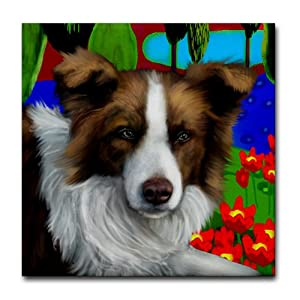 CafePress BORDER COLLIE DOG red and white Tile Coaster