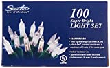 Sienna 100 Add-a-Set Bulb - Clear-Color Indoor Outdoor String Lights