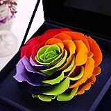 CARVIAN Preserved Fresh Flower Rose Gift Box (Rainbow Rose/Blue Box)