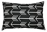 JinStyles Cotton Canvas Arrow Accent Decorative Throw Lumbar Pillow Cover / Cushion Sham (Black, White, Rectangular, 1 Cover for 12 x 18 Inserts)
