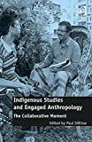 img - for Indigenous Studies and Engaged Anthropology: The Collaborative Moment book / textbook / text book