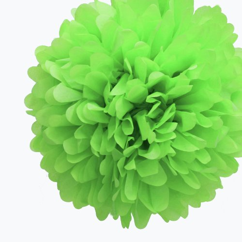 Dress My Cupcake 5-Inch Kiwi Green Tissue Paper Pom Poms, Luau Decorations/Luau Party Supplies And Decorating Ideas, Set Of 8 front-486999
