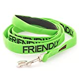 FRIENDLY Dexil Friendly Dog Collars Color Coded Dog Accident Prevention Leash 4ft/1.2m Prevents Dog Accidents By Letting Others Know Your Dog In Advance Award Winning
