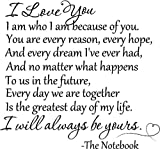 I love you. I am who I am because of you. You are every reason, every hope, and every dream I've ever had, and no matter what happens to us in the future, every day we are together is the greatest day of my life. I will always be yours. The Notebook wall quotes sayings vinyl decals art