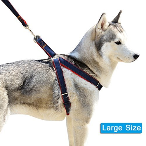 Lifepul(TM) Dog Leash Harness / Collar Set - Adjustable Heavy Duty Denim Harness Leash Set in Universal Size for All Dogs - No Pull in Training & Everyday Walking (Leash Harness compare prices)