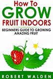 How To Grow Fruit Indoors - Beginners Guide to Growing Amazing Fruit