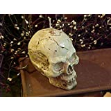 Skull 6 oz. Candle 1 Cavity Silicone Mold 1818 Food-Soap-Candle-Resin-Flexible Silicone Mold