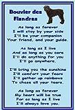 Bouvier des Flandres - Novelty Dog Fridge Magnets - As long as