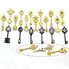 Laie® Fairy Tail Lucy New Collection Set of 21 Golden Zodiac Keys + Chain
