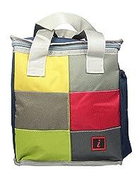 FabSeasons Multipurpose Lunch Bag