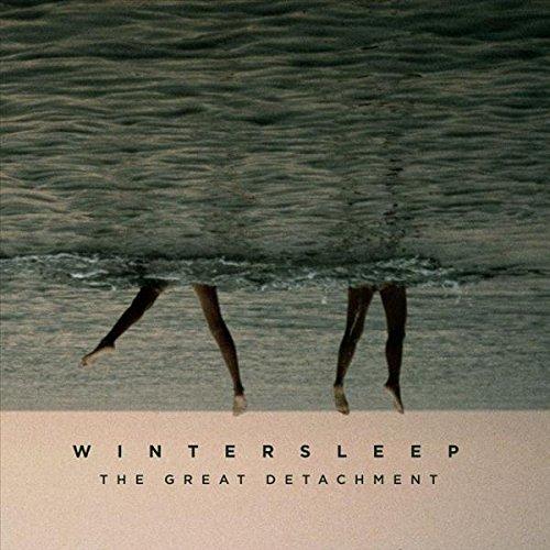Wintersleep - The Great Detachment - Zortam Music