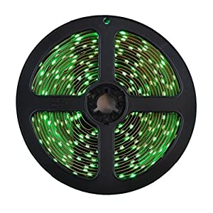 HitLights LS3528_GN Flexible LED Ribbon Lighting Strip with 300 LED, 5 Meter or 16.4-Feet Spool, 12VDC Input, Green