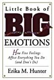 img - for Little Book of Big Emotions: How Five Feelings Affect Everything You Do (and Don't Do) book / textbook / text book