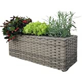 Habau 2631 Planter for Flowers and Herbs