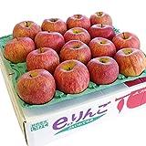 産直だより 岩手県 JAいわて中央 特別栽培りんご  シナノスイート 5キロ 14玉~20玉